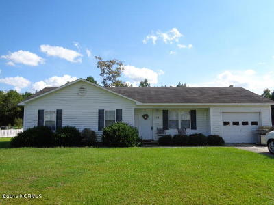 Jacksonville Single Family Home For Sale: 1043 Shirley Drive