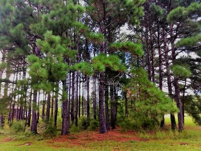 Calabash NC Residential Lots & Land For Sale: $89,000