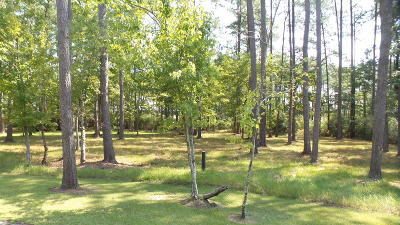 Residential Lots & Land For Sale: 142 Broadview Point