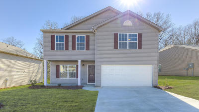 Rocky Mount Single Family Home For Sale: 4640 Lily Walk