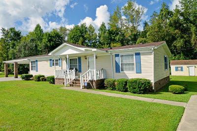 Farmville Manufactured Home For Sale: 43 Lewis Store Road