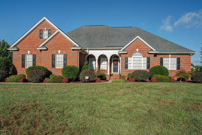 Rocky Mount Single Family Home For Sale: 300 Mayfair Drive