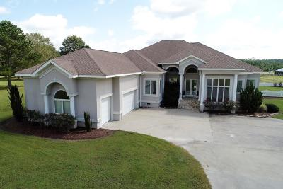 Winterville Single Family Home For Sale: 3841 Speight Seed Farm Road