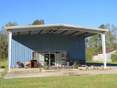 Whiteville Commercial For Sale: 2056 New Britton Highway E
