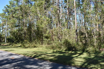 Beaufort Residential Lots & Land For Sale: 113 Dolphin Way