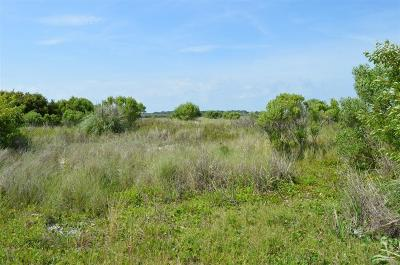 Holden Beach Residential Lots & Land For Sale: 1344 Ocean Boulevard W