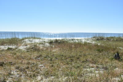 Holden Beach Residential Lots & Land For Sale: 1029 Ocean Boulevard W