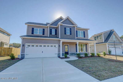 Castle Hayne Single Family Home For Sale: 3737 Stormy Gale Place