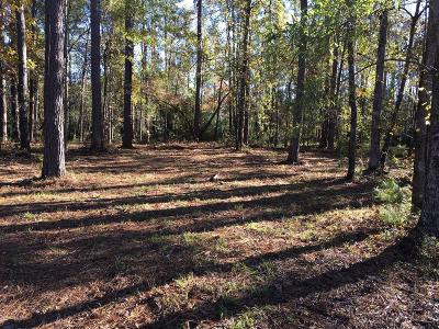 New Bern Residential Lots & Land For Sale: 4306 Periwinkle Place