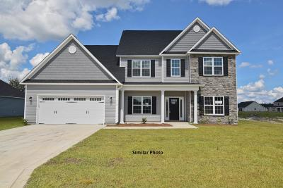 Onslow County Single Family Home For Sale: 313 March Sea Lane