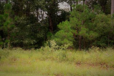 Shallotte Residential Lots & Land For Sale: 5193 Green Heron Drive SW
