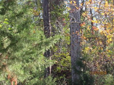 Lake Waccamaw Residential Lots & Land For Sale: 111 E White Oak Street