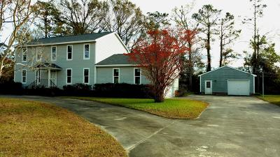 Carteret County Single Family Home For Sale: 128 Howland Parkway