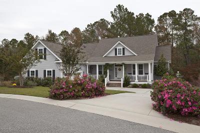 28451 Single Family Home For Sale: 3826 Lemon Drop Lane NE