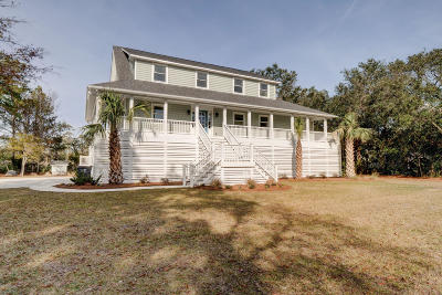 Wilmington Single Family Home For Sale: 233 Chimney Lane