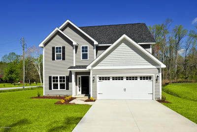 Swansboro Single Family Home For Sale: L19 Summer Rest Trail