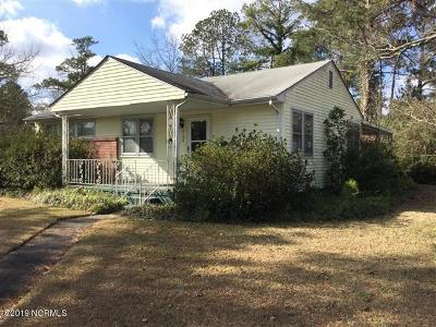 New Bern Single Family Home For Sale: 2100 Center Avenue