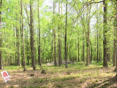 Lake Waccamaw Residential Lots & Land For Sale: 426 Crabapple Lane