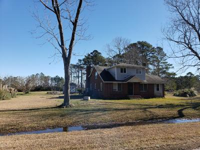 Single Family Home For Sale: 235 Nelson Neck Road