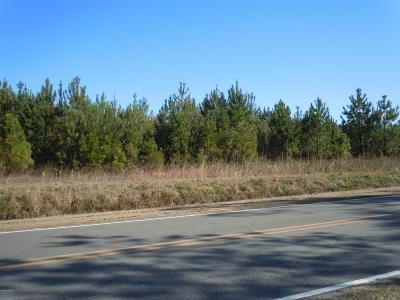 Residential Lots & Land For Sale: 1465 Wright Road