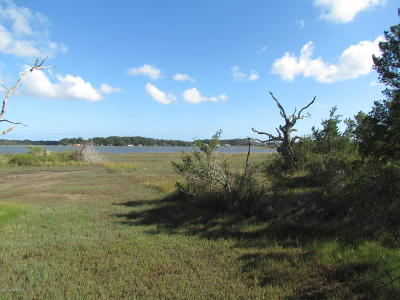Beaufort Residential Lots & Land For Sale: 186 Wards Creek Road