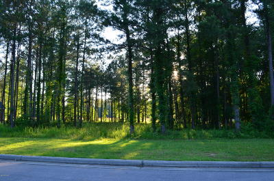 New Bern Residential Lots & Land For Sale: 3723 Viridian Trace