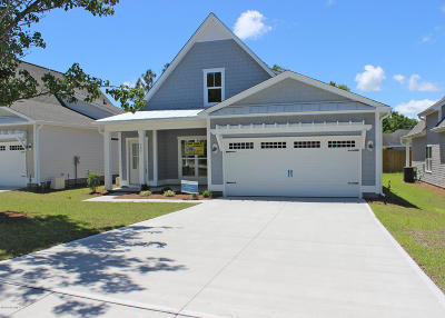 Wilmington Single Family Home For Sale: 387 Beau Rivage Drive