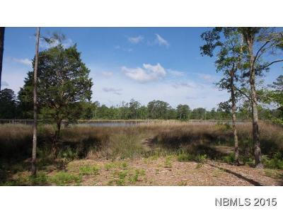 Residential Lots & Land For Sale: 1173 Old Mill Road