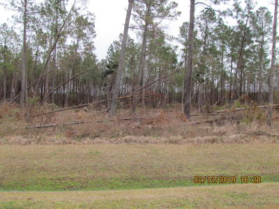 Beaufort Residential Lots & Land For Sale: 232 Garbacon Drive