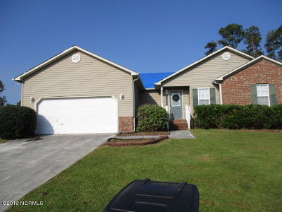 Jacksonville Rental For Rent: 411 Southbridge Drive