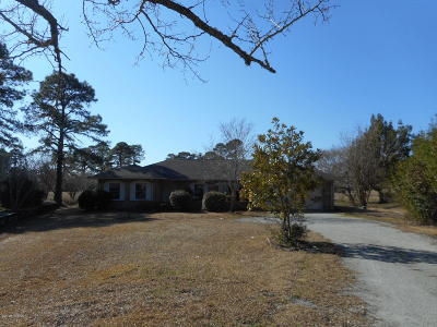 New Bern Single Family Home For Sale: 1215 Mona Passage Court