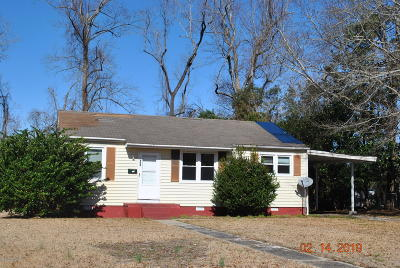 Onslow County Single Family Home For Sale: 419 Nelson Drive