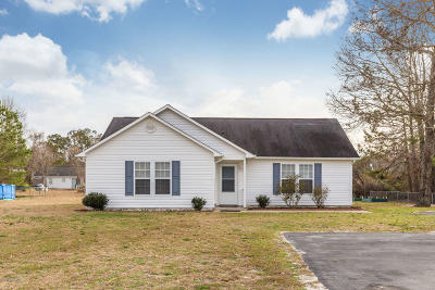 Hampstead Single Family Home For Sale: 2364 Nc Highway 210 E