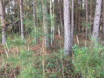 Chadbourn Residential Lots & Land For Sale: Lot B Joe Brown Highway S