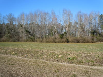 Residential Lots & Land For Sale: 250 G B Estates Avenue
