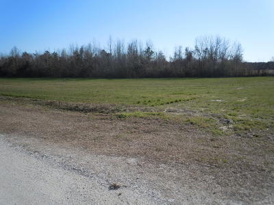 Residential Lots & Land For Sale: 220 G B Estates Avenue