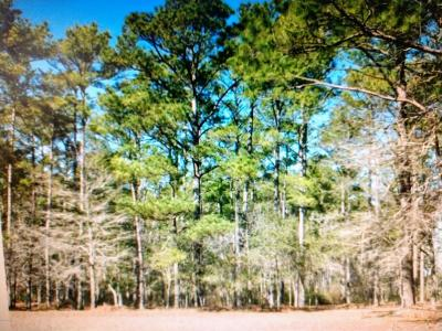 Ocean Isle Beach Residential Lots & Land For Sale: 5842 Biltmore Place SW