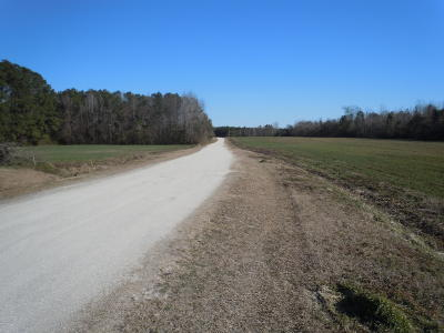 Whiteville Residential Lots & Land For Sale: 163 G B Estates Avenue