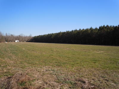 Whiteville Residential Lots & Land For Sale: 134 G B Estates Avenue