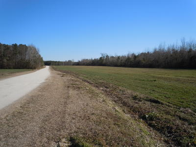 Whiteville Residential Lots & Land For Sale: 166 G B Estates Avenue