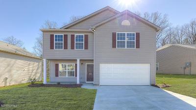 Rocky Mount Single Family Home For Sale: 4549 Chippenham Road