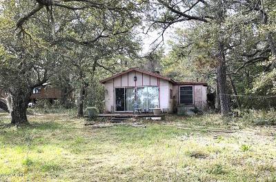 Wilmington Single Family Home For Sale: 7009 Carolina Beach Road