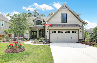 Wilmington Single Family Home For Sale: 1053 Pandion Drive