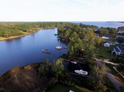 Beaufort Single Family Home For Sale: 1595 S River Road