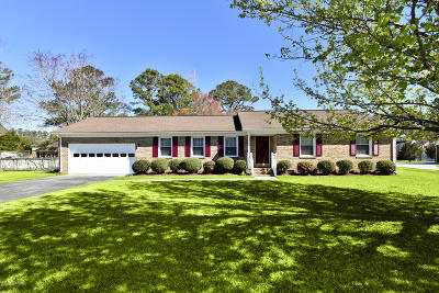 Jacksonville Single Family Home For Sale: 209 Columbia Drive