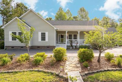 Hampstead Single Family Home For Sale: 220 Sand Dollar Lane