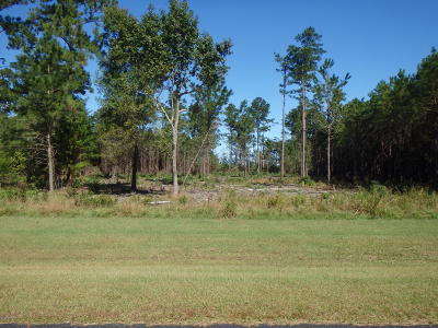 Beaufort Residential Lots & Land For Sale: 257 Garbacon Drive