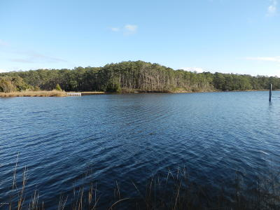 Beaufort Residential Lots & Land For Sale: 119 Sandy Huss Drive