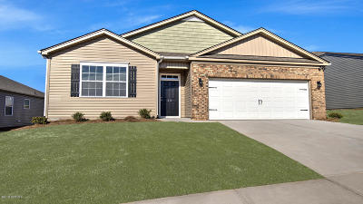 Winterville Single Family Home For Sale: 577 Denali Road