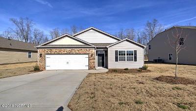 Winterville Single Family Home For Sale: 534 Denali Road